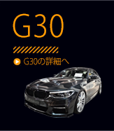 G30/G31