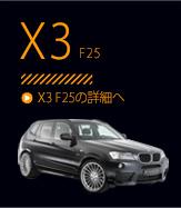 X3 F25