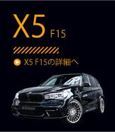 X5 F15