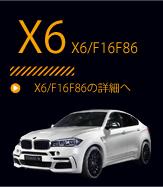 X6 F16