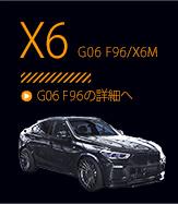 X6 G06